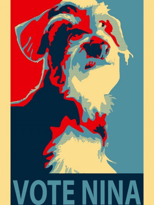 i miei lavori-titolo-vote nina!