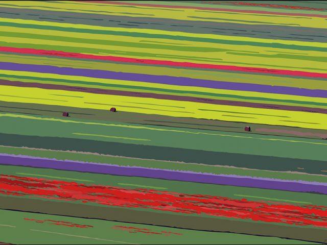 i miei lavori-titolo-piana fiorita